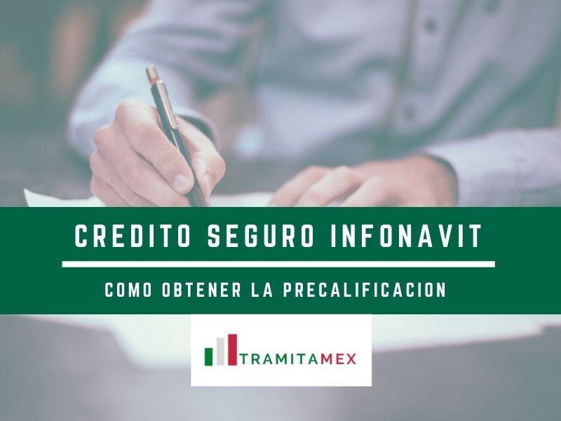 Credito Seguro Infonavit - Como obtener la precalificación