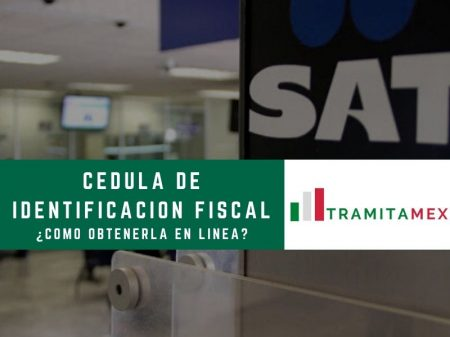 Cédula de Identificación Fiscal México